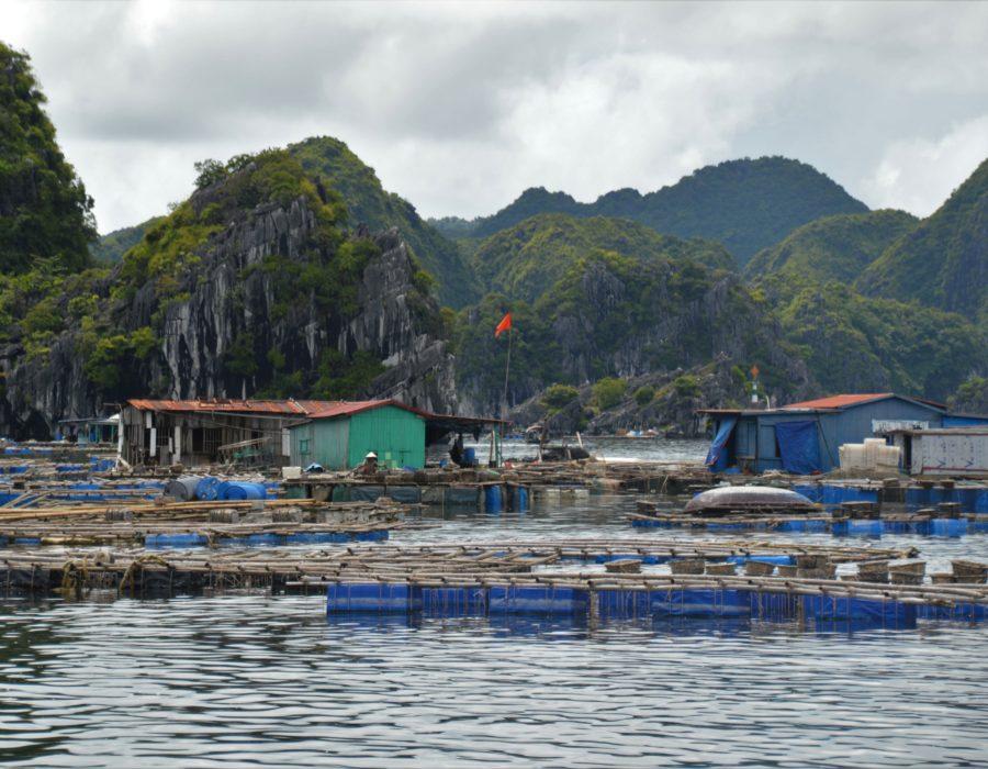 Vietnam floating village