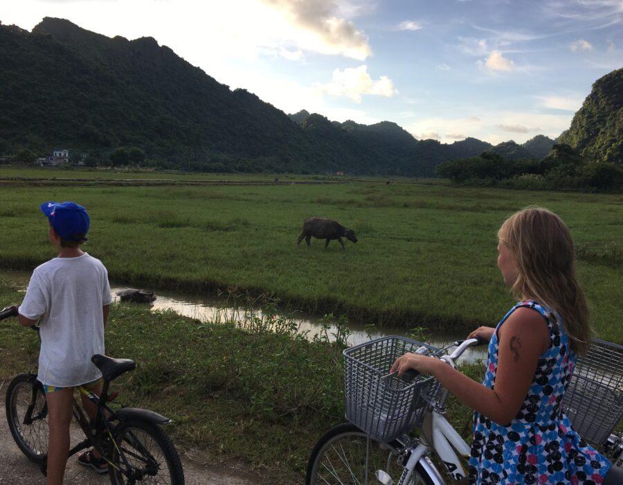 cykeltur Vietnam