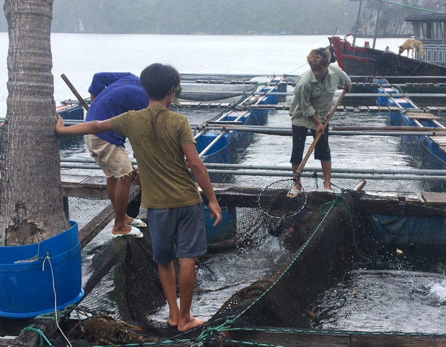 Vietnam med børn